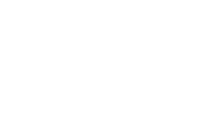 Agility Executive Search